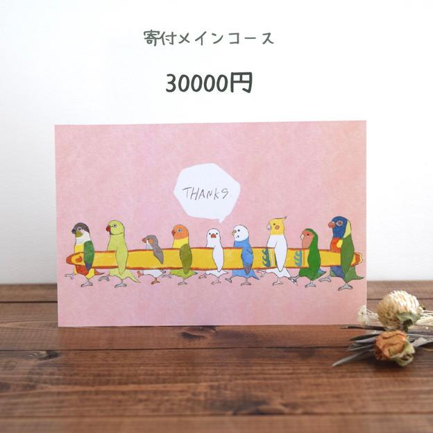 寄付メインコース 30000円 寄付率100%
